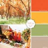 Inspire, Create, Celebrate {kumquat + sage}