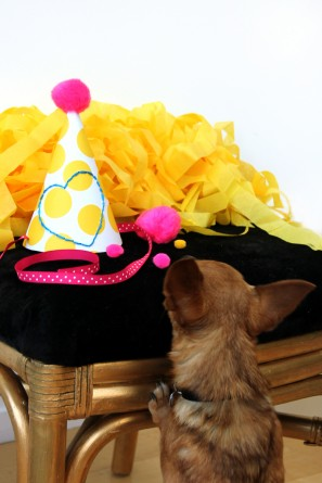 Party Hat DIY Tutorial