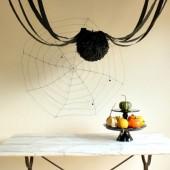 Five Things That Look Like Spiders