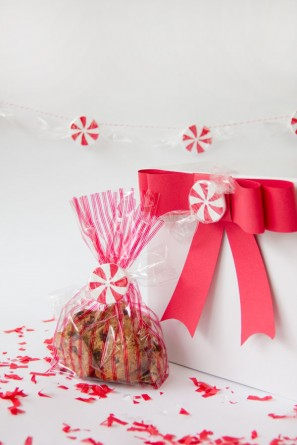 DIY Faux Peppermint Candies | Studio DIY (14)