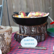 camping-party-cookies-285x427