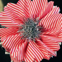 diy-christmas-tissue-paper-flowers-285x189
