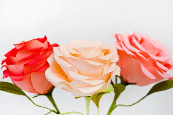 DIY gigantes Crepe Paper Roses