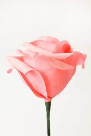 How To Make Giant Crepe Paper Roses3