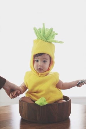 Pineapple Costume from Max Wanger
