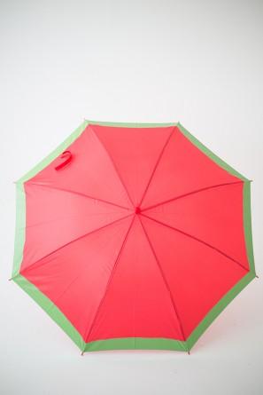 DIY Fruit Slice Umbrellas