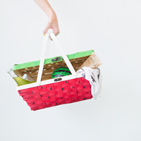 DIY-Watermelon-Picnic-Basket5thumba