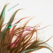 Party Hair: Hair Chalk for Brunettes! (+ A Fishtail Top Knot)